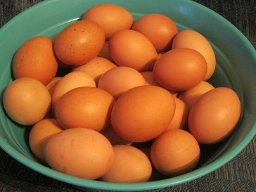 Beautiful Brown Jersey Giant Eggs